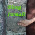 Blog Iwmali